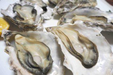 冬が来ると食べたい牡蠣。海のミルクの栄養で免疫力アップと女性に嬉しい効果