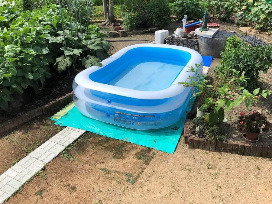庭でプール